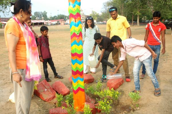 Tree plantation by team Rang De