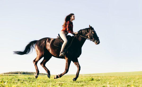 Horse-Riding-Allaboutjaipur.com