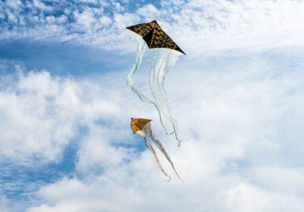 Kite-Festival-Allaboutjaipur.com
